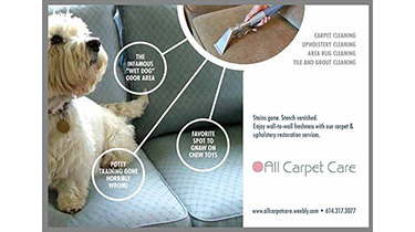A corporate postcard for a carpet cleaning company showing a carpet cleaning hand tool cleaning a couch with a small dog sitting on it
